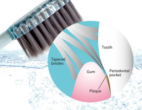 水だけでも充分な清掃効果を示す歯ブラシ